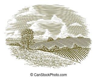 campo, vendimia, woodcut