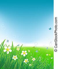 campo verde, con, mariposas, verano, plano de fondo