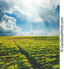 campo verde, con, trayectoria, debajo, sol
