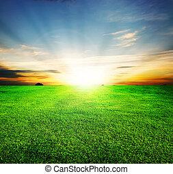campo verde, e, bonito, pôr do sol