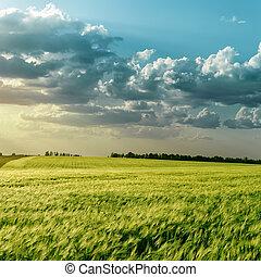 campo verde, e, nuvens, sobre, aquilo, em, pôr do sol
