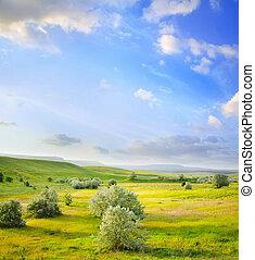 campo, verde, ocaso
