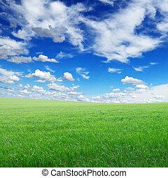 campo verde, y, cielo