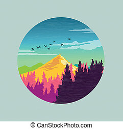 campo, vetorial, colorido