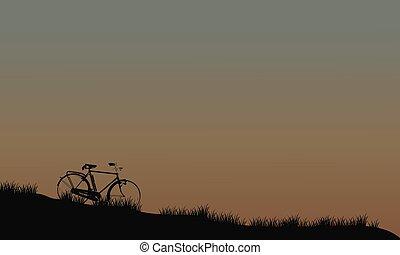 campos, bicicleta, silueta
