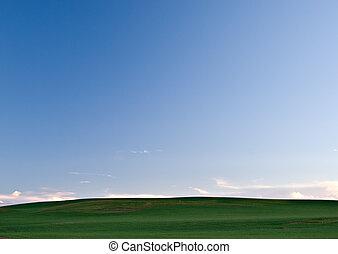 campos, céu verde