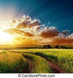 campos, sobre, dramático, pôr do sol, estrada