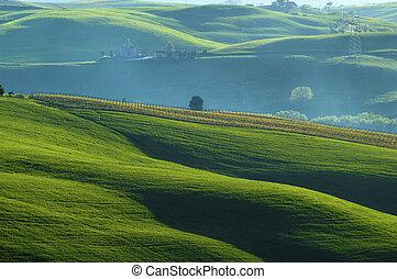 campos, sunlit