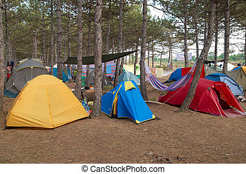 Campsite in the forest