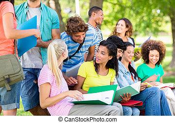 campus, studenci, badając