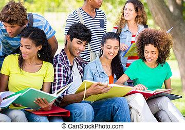 campus, studenci, badając, razem