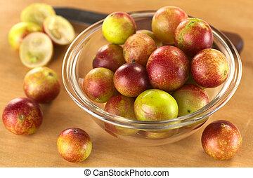 Camu camu berry fruits (lat. Myrciaria dubia) which are ...