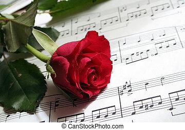 canção amor
