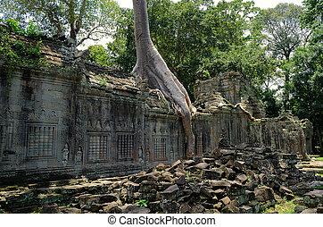can, preah, tempio
