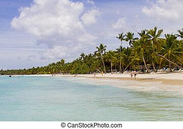 cana, punta, 共和国, ドミニカ人