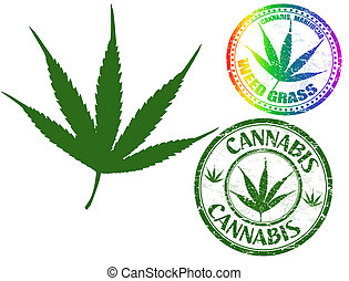 Canabis leaf vector isolated on white background and cannabis grunge stamps