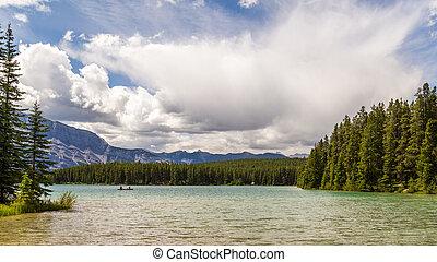 Canadá,  Banff, nacional, dois, parque, macaco,  Alberta