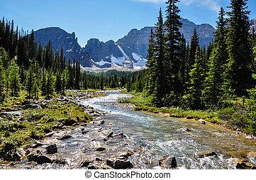 Canadá,  Banff, rastro, nacional, parque, passagem,  Alberta, Templo