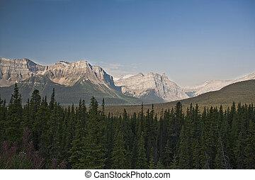 canadá, canadense, -, nacional, rochoso, parque, jasper, alberta