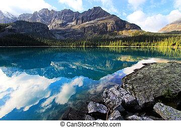 canadá, columbia, yoho, nacional, lago, britânico, parque, o...