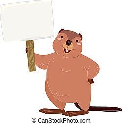 canadá, ilustração, placa sinal, em branco, castor