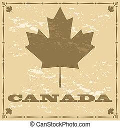 canadá velho, estilo, folha, maple