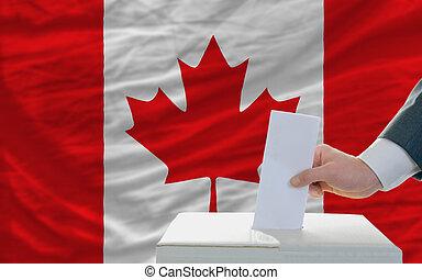 canadá, votación, elecciones, hombre