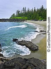 canada, costa, oceano pacifico