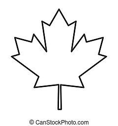canada flag maple leaf icon