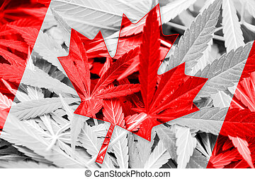 Canada Flag on cannabis background. Drug policy....