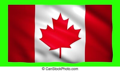 Canada flag on green screen for chroma key