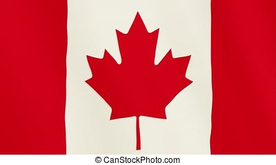 Canada flag waving animation. Full Screen. Symbol of the country.