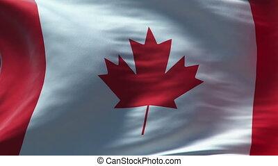 canada flag waving loop