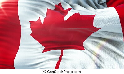 CANADA FLAG waving on sun. Seamless loop with highly detailed fabric texture. Loop ready in 4k resolution.