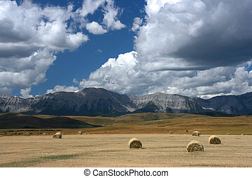 Canada - Hay bales. Alberta prairie fields and Rocky...