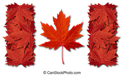 Canada leaf flag made with three dimensional red maple leaves as an autumn symbol as a canadian pride seasonal themed concept as an icon of the fall weather on a white background.