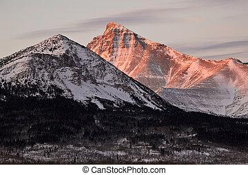 canada, montagne, roccioso, neve, alberta, coperto
