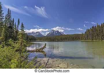 canada,  -, nazionale, parco, lago, diaspro, piccolo,  Alberta