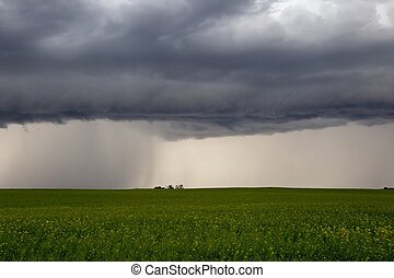 canada, nuages tempête, prairie