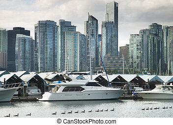canada, orizzonte, park., vancouver, zona portuale, stanley