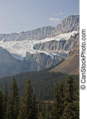 canada, -, parco nazionale, diaspro, alberta, icefield
