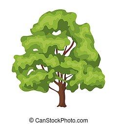 canada, style, symbole canadien, web., illustration, unique, vecteur, maple., icône, dessin animé, stockage