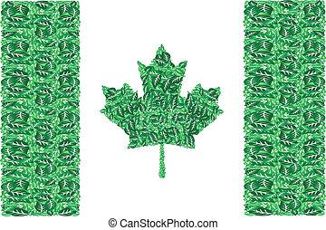 canada, vert