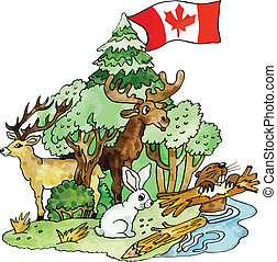 Canadian animals vector illustration