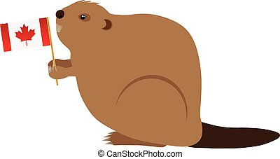 The Canadian Beaver Holding Canada Flag Color Illustration