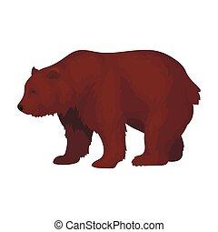 Canadian brown bear. Canada single icon in cartoon style...