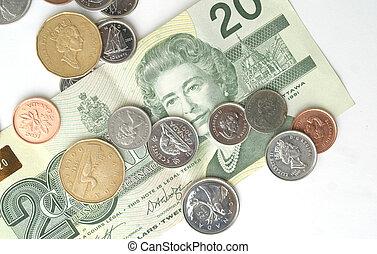 Canadian currency - A still of a Canadian twenty dollar bill...