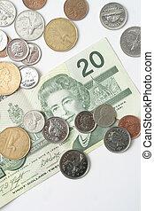 A still of a Canadian twenty dollar bill and pocket change.