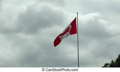 Canadian flag waving in light wind.