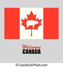 canadian flag celebration day